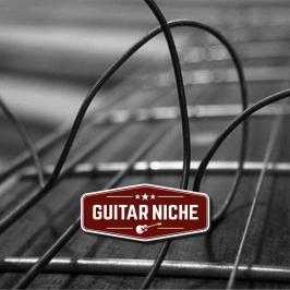 Guitar Niche - Breaking Strings Is Breaking Bad