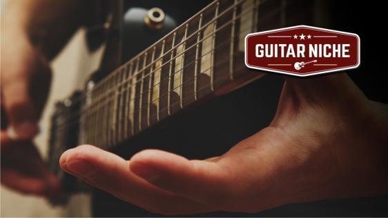 Guitar Niche - Fret Sprouts