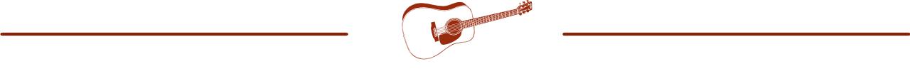 Guitar Niche -bar acoustic