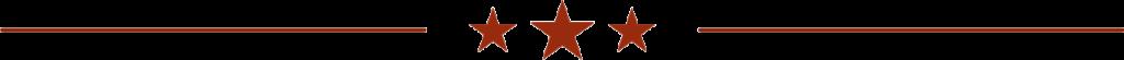 Guitar Niche -bar stars