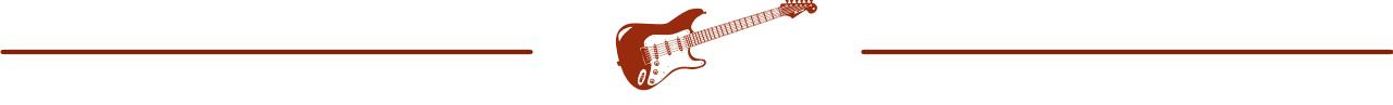 Guitar Niche -bar strat
