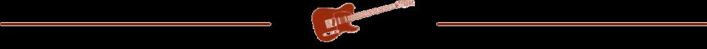 Guitar Niche -bar tele