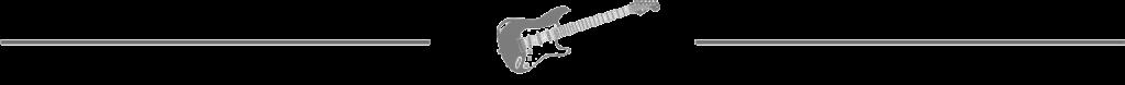 Strat Guitar Divider